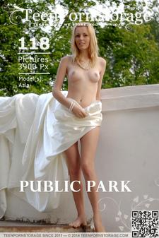Teen Porn Storage - Asia - Public Park